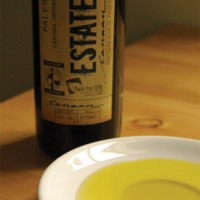 Canaan Fair Trade Estate Olive Oil (organic)